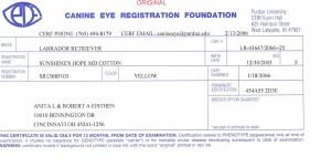 Aspen's CERF Certificate January 2006