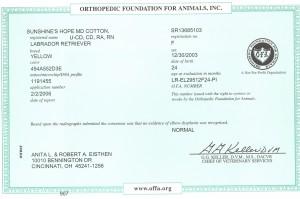 Aspen's OFA Elbow Certificate