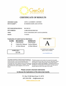Aspen Coat Lenght and Curly Coat Certification