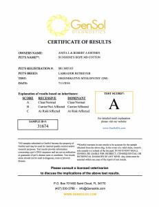 Aspen Degenerative Myelopathy Certification