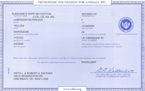 Aspen's Certificates