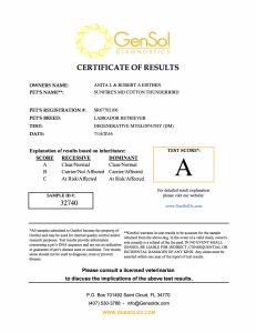 T-Bird Degenerative Myelopathy Certification