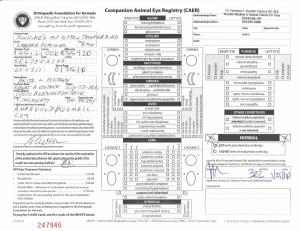 Thunderbird CERF SR67702106